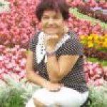 kok123456, kobieta, 68 l., Gorzów Wielkopolski