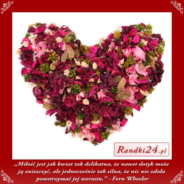 Miłość jest jak kwiat tak delikatna